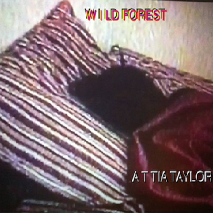 Wild Forest cover art