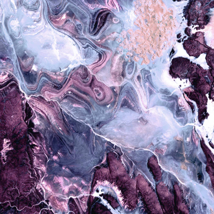 Planet Plant cover art