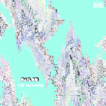 DAILON   THE MEANING (RAW DATA) cover art