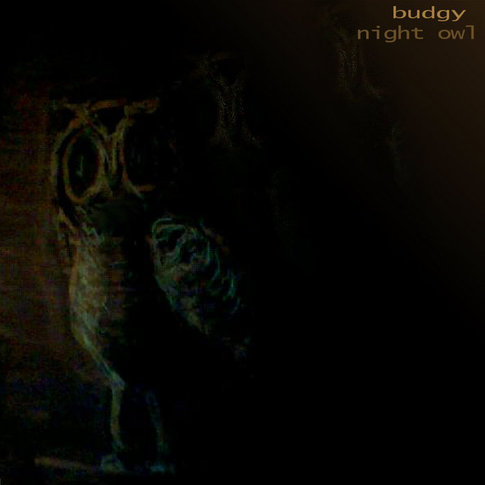 Night Owl cover art