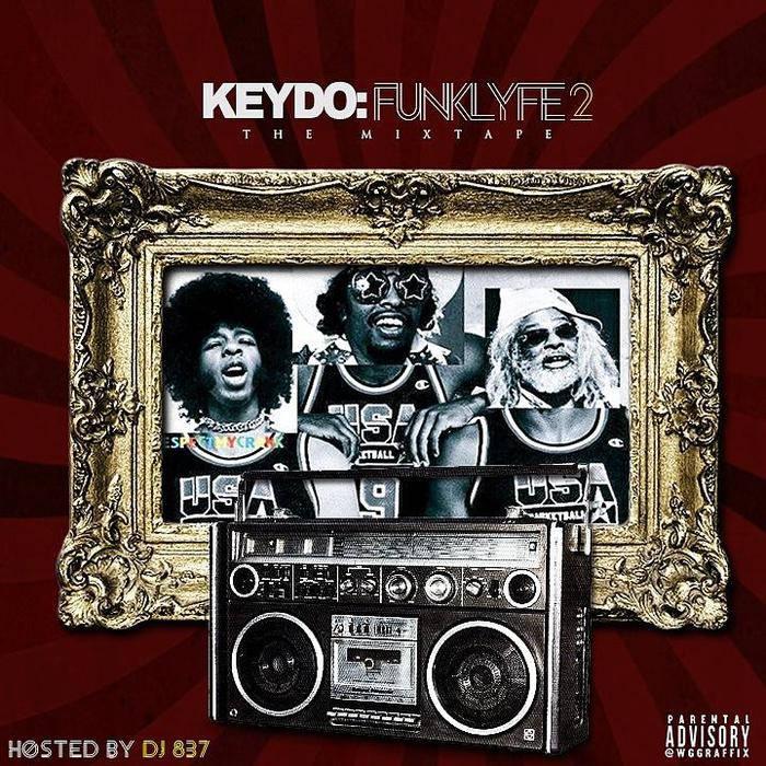 Funk Lyfe 2 cover art