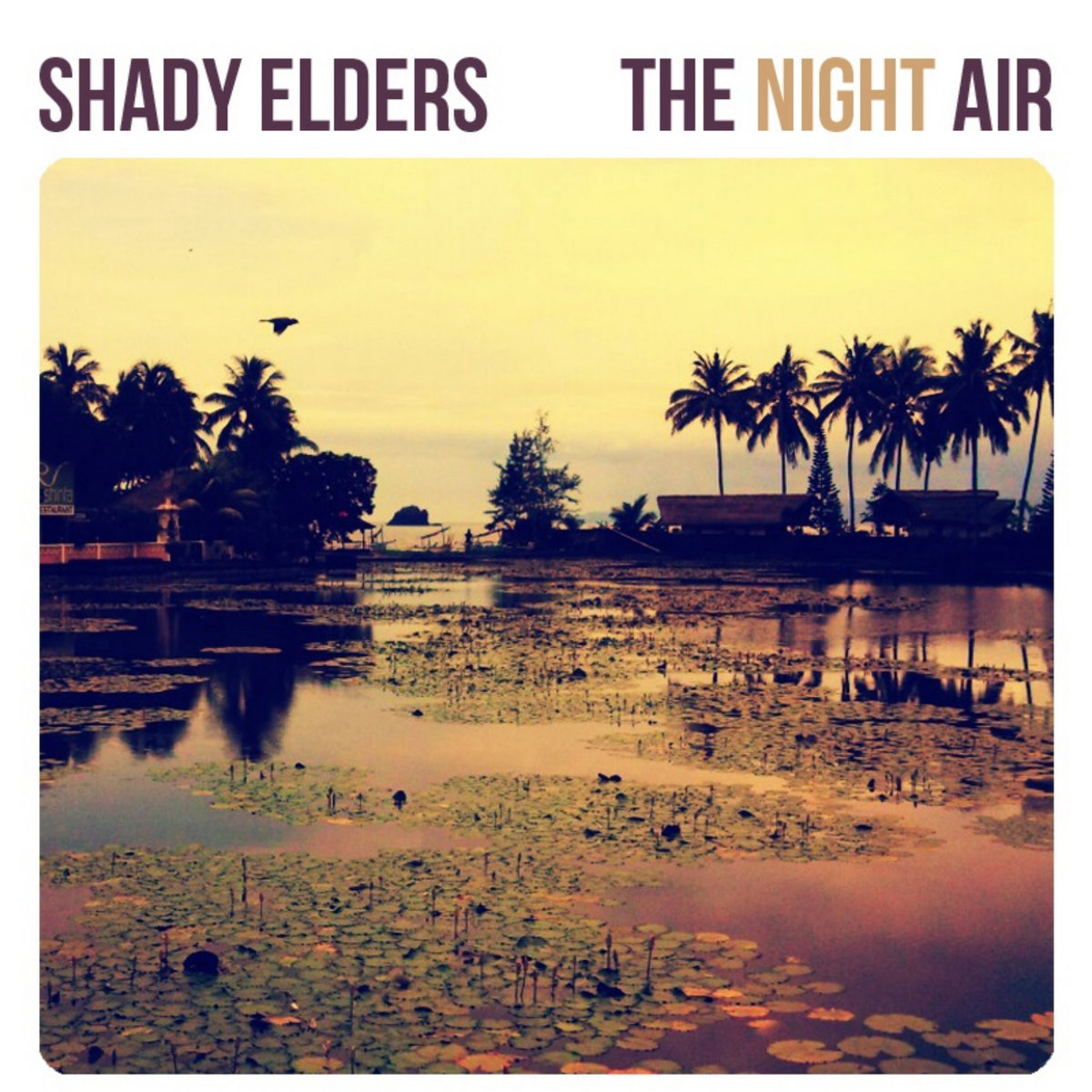 The Night Air EP – Shady Elders