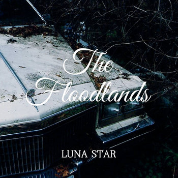The Floodlands cover art