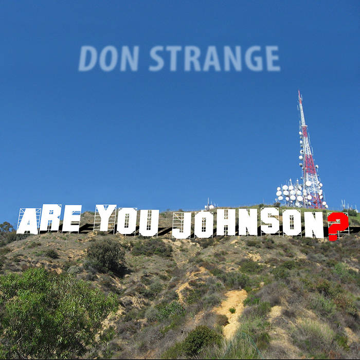 Are You Johnson? cover art