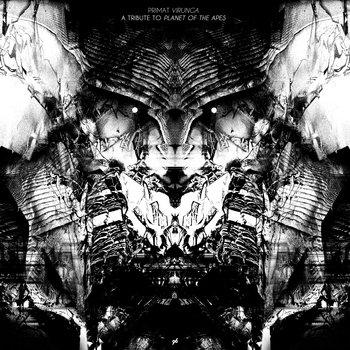Virunga cover art