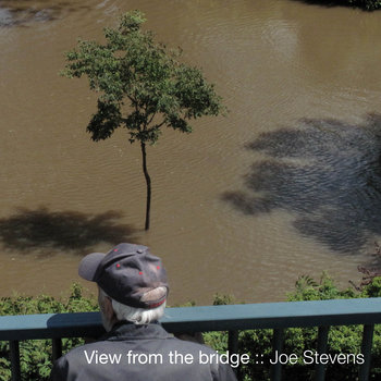 View from the bridge cover art