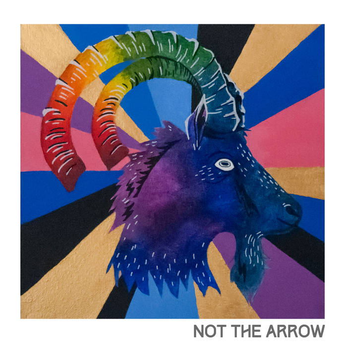not the arrow cover art