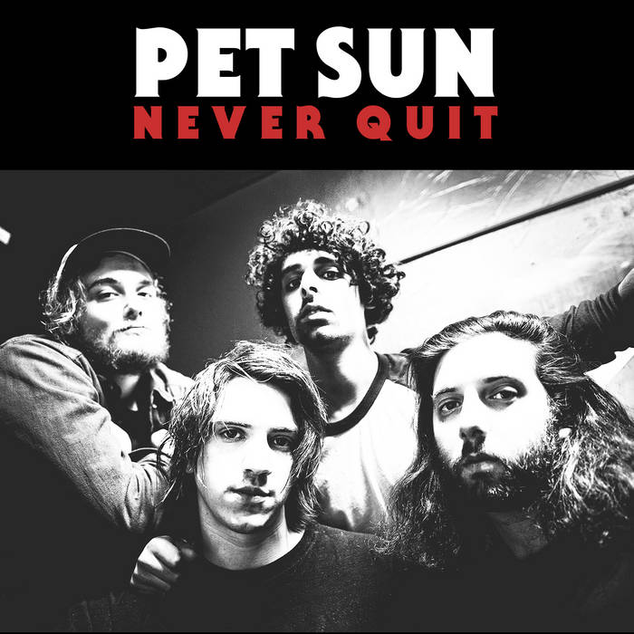 Never Quit cover art