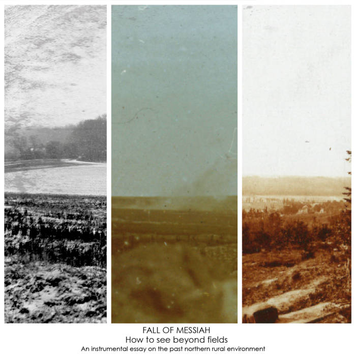 How to see beyond fields cover art