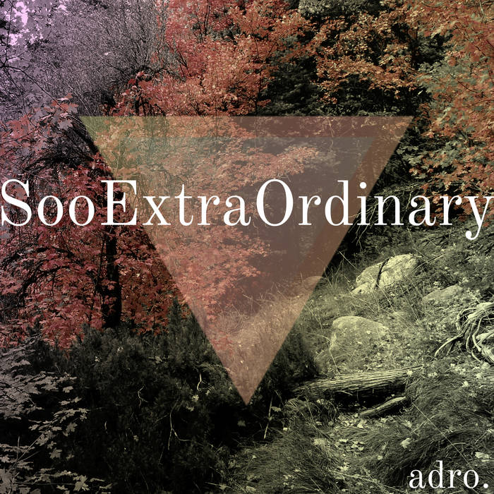 SooExtraOrdinary cover art