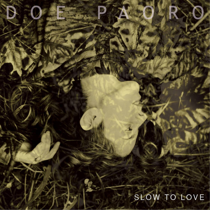 Slow to Love cover art