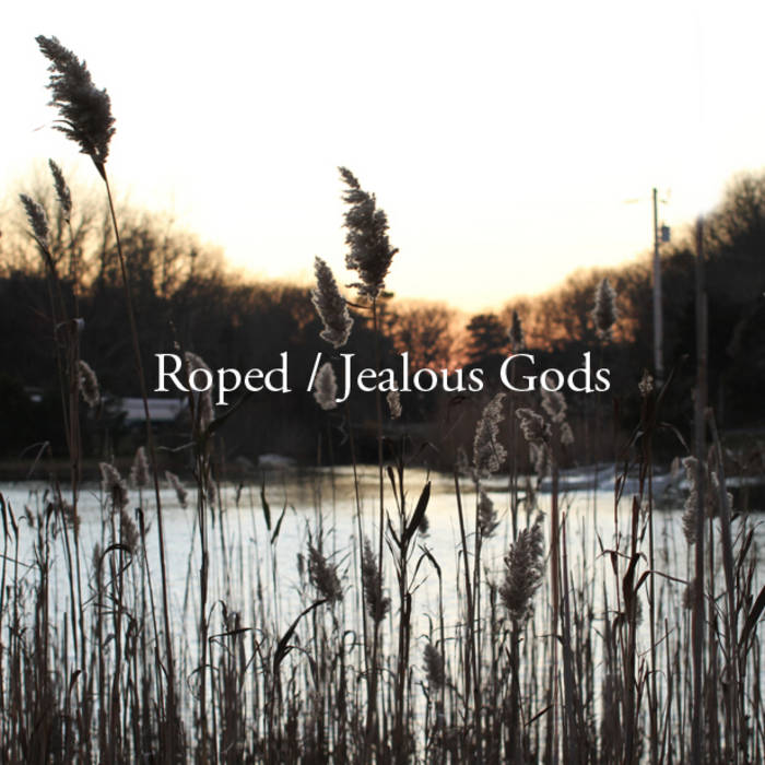 "Roped /Jealous Gods 7"" cover art"