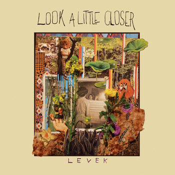 Look A Little Closer cover art