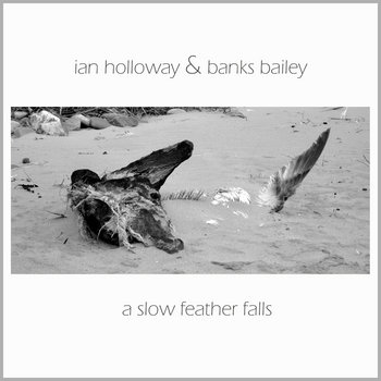 A Slow Feather Falls cover art