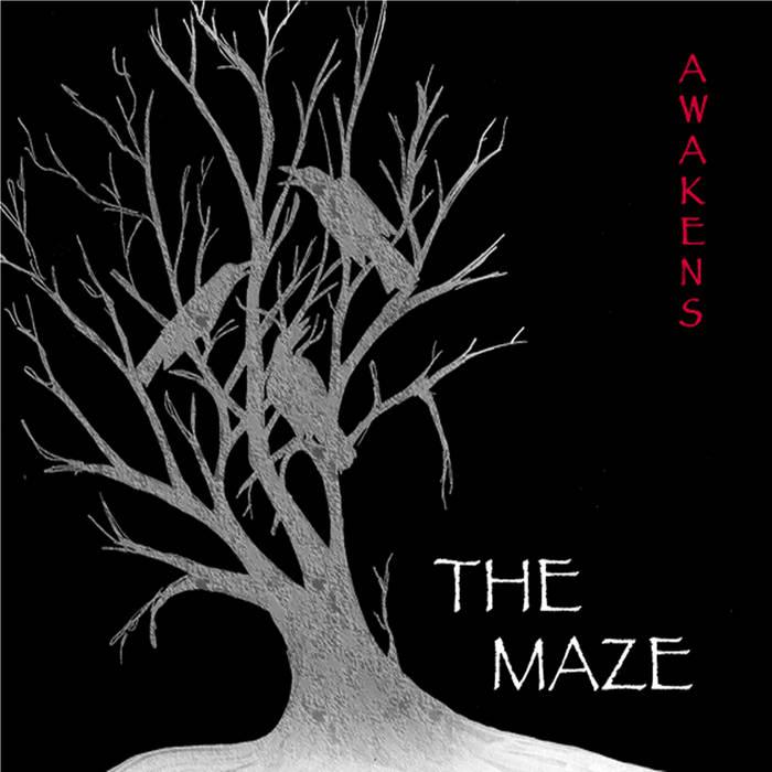 Awakens cover art