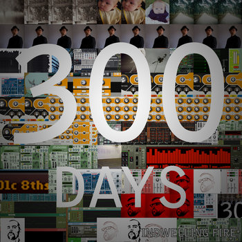 300 Days cover art