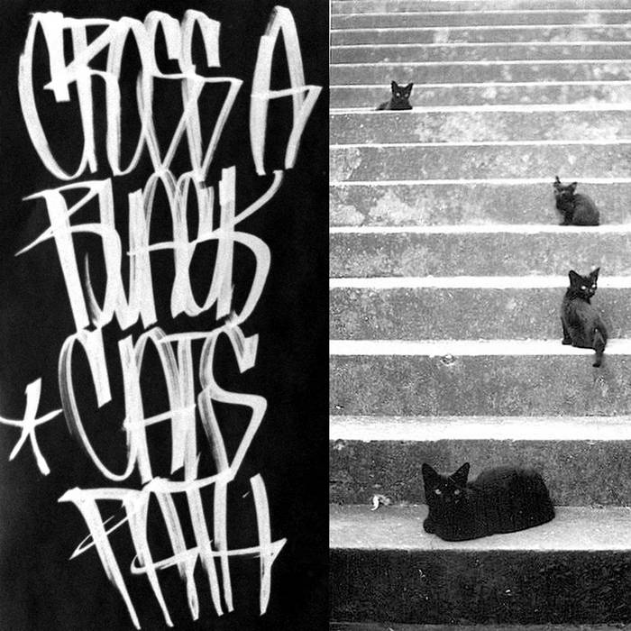Cross A Black Cat's Path cover art