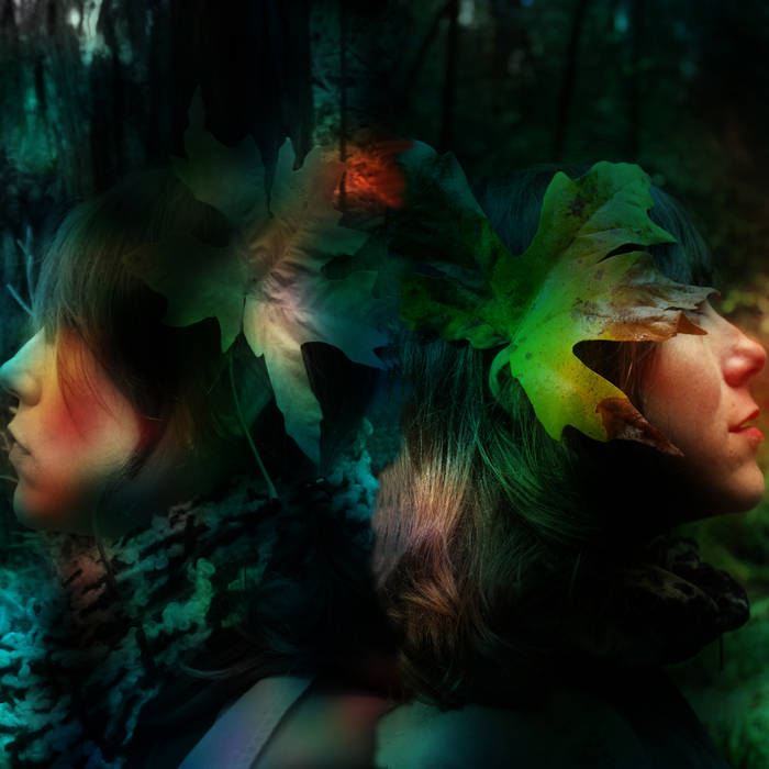 Darling In Dream Dimension cover art