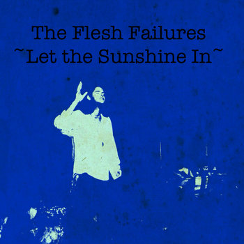 The Flesh Failures(Let the Sunshine In) cover art