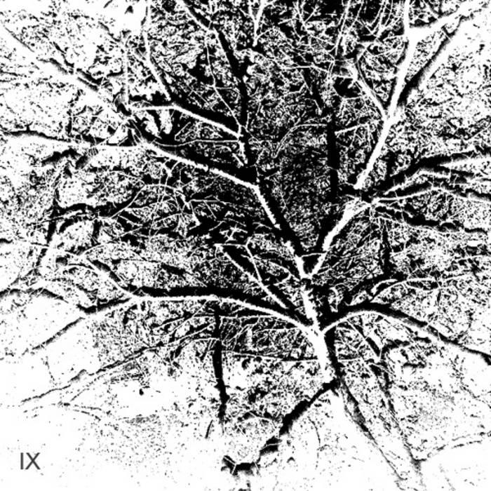 IX cover art