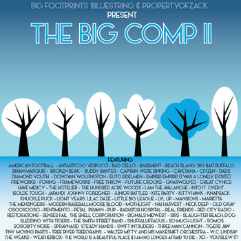 The Big Comp II cover art