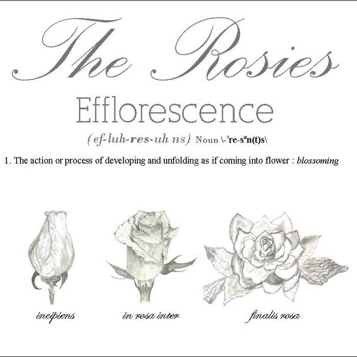 Efflorescence cover art