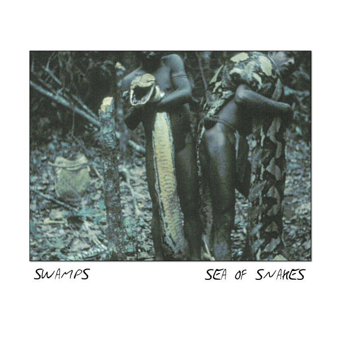 Sea of Snakes (Single) cover art