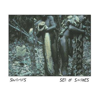 Sea of Snakes (Single) cover art