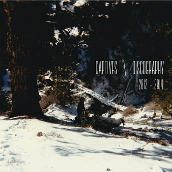 Discography cover art