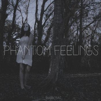 Phantom Feelings cover art