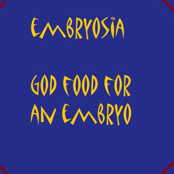 God Food For An Embryo cover art