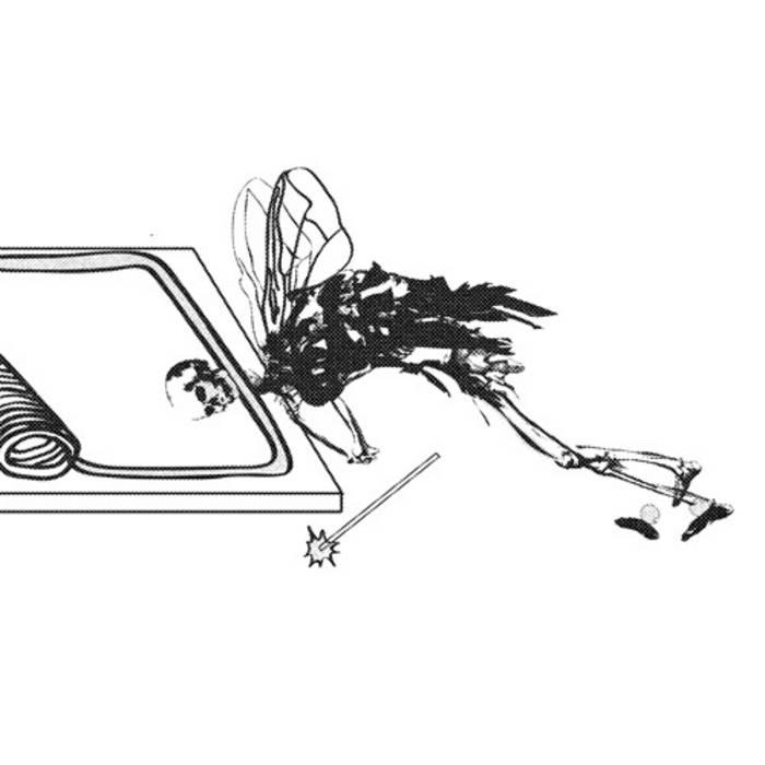 vestigial wings cover art