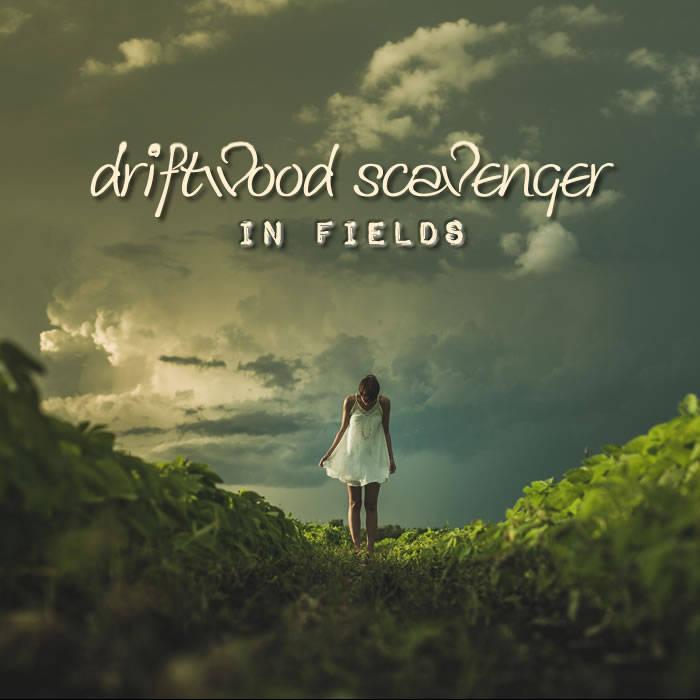 In Fields cover art