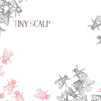 Tiny scalp Ep cover art