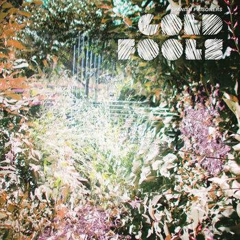 Gold Fools cover art