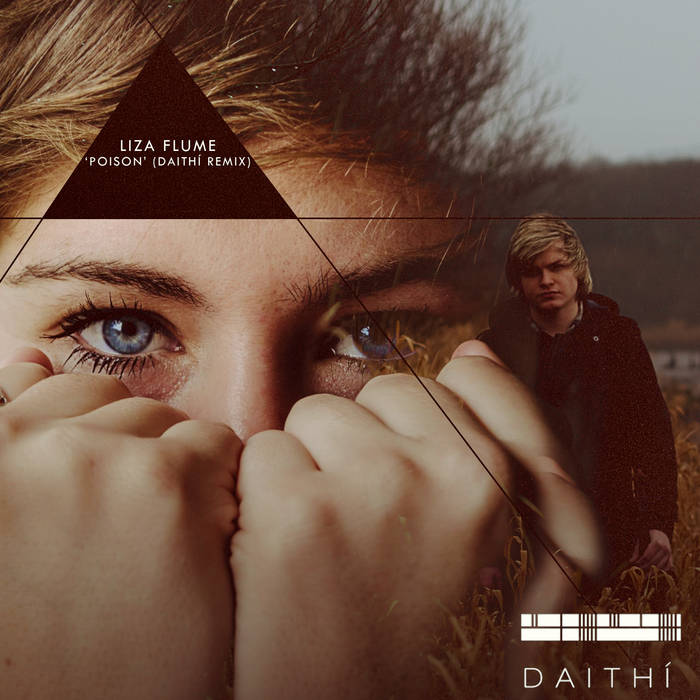 Liza Flume - Poison (Daithi remix) cover art