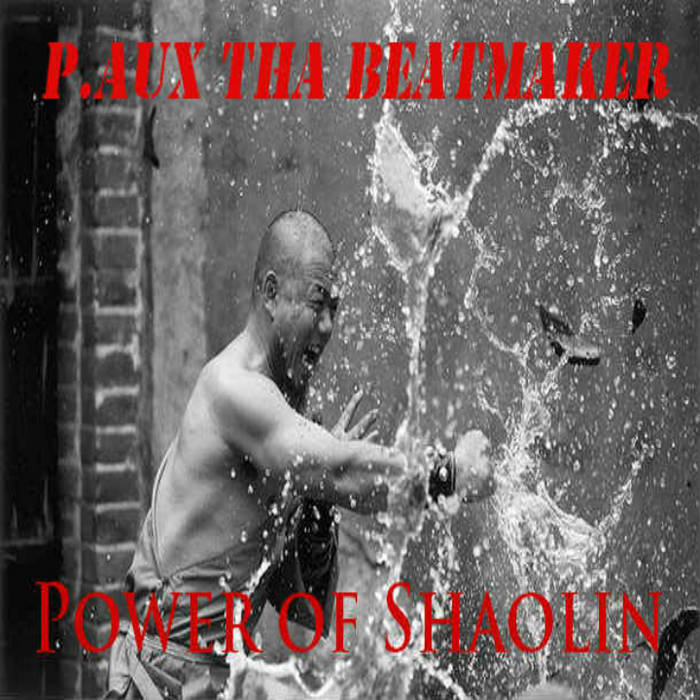 Power of Shaolin cover art
