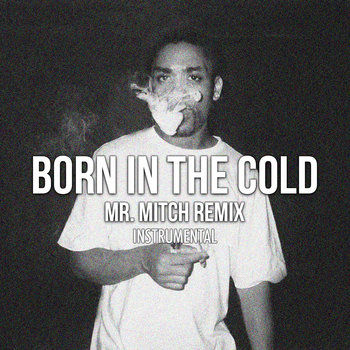 Wiley - Born In The Cold Remix (Instrumental) cover art