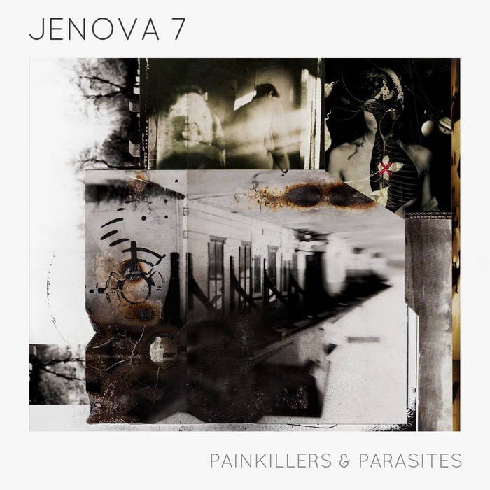 Painkillers & Parasites cover art