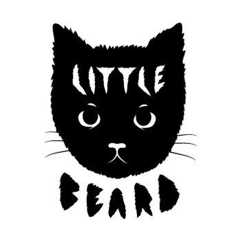 Little Beard cover art