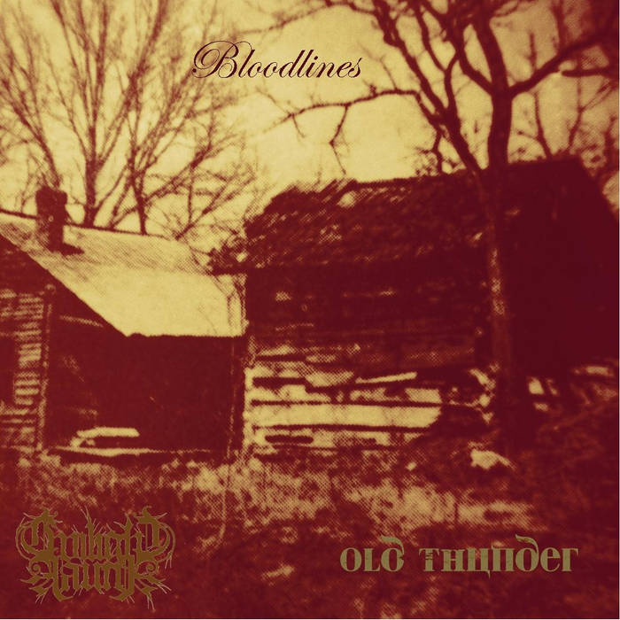 Bloodlines (split with Old Thunder) cover art