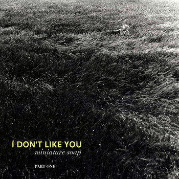 I Don't Like You (part 1) cover art