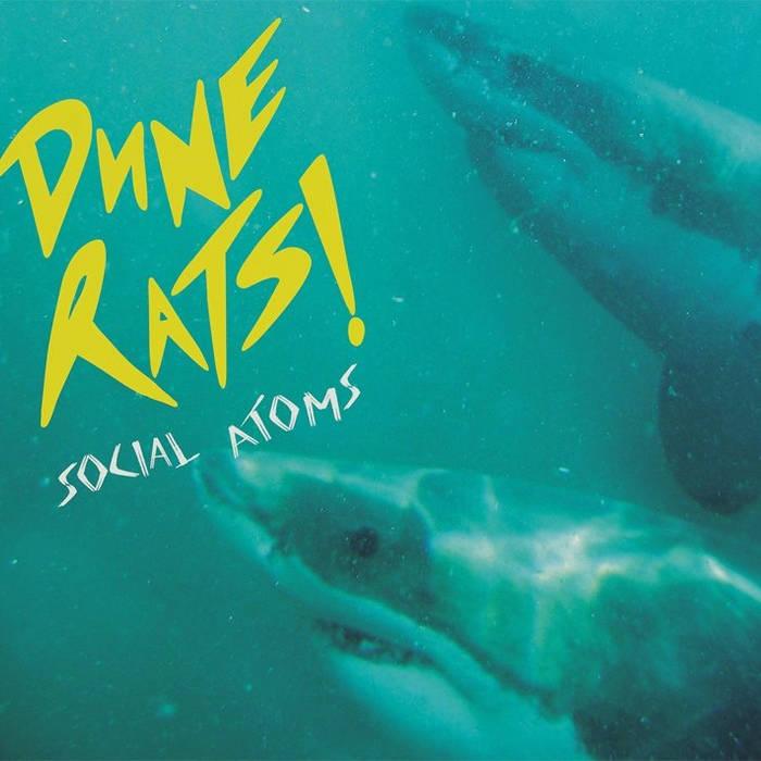 Social Atoms cover art