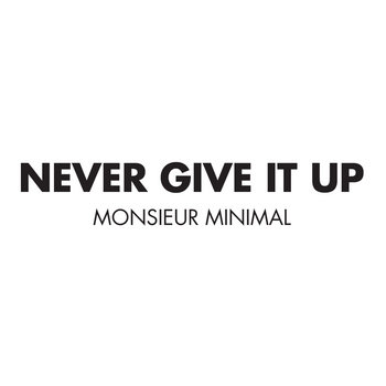 Never Give it Up cover art