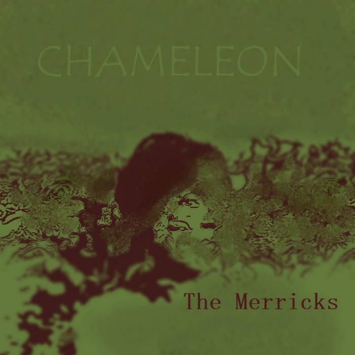 Chameleon cover art