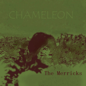 Chameleon cover art
