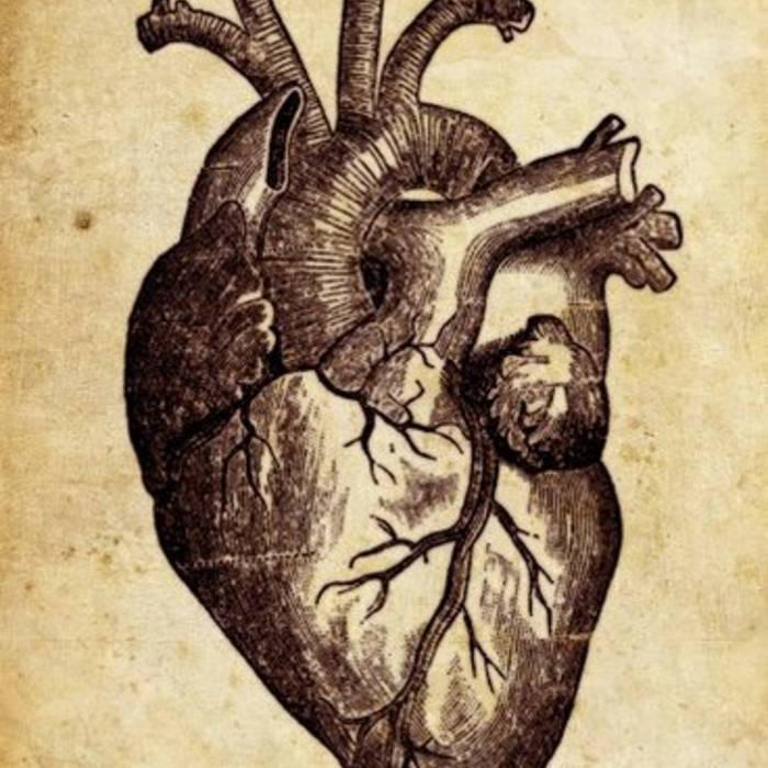 Fool cover art