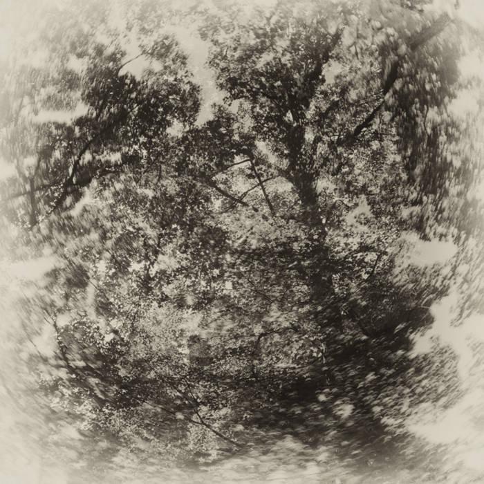 Untitled (HD016) cover art
