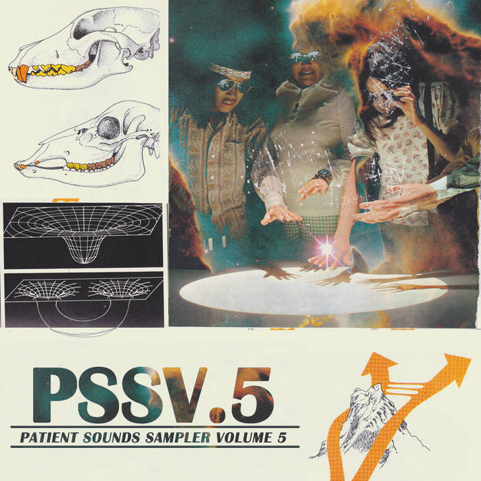 PSSV.5 cover art