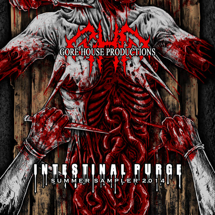 Intestinal Purge (Summer Sampler 2014) cover art